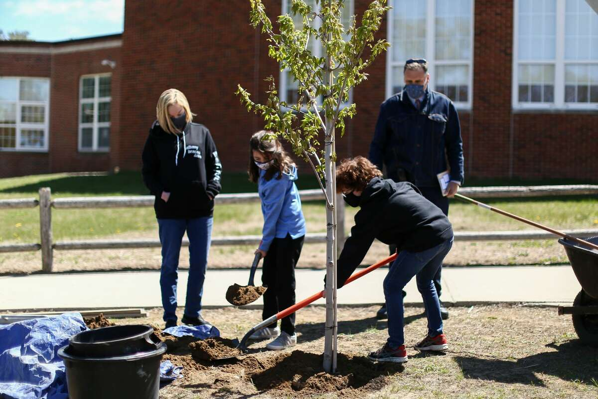 Dr. Marianne DiCerbo of Albany Braces, Mark Warford -Assistant Principal and two helpful students plant a tree at Bethlehem school district.