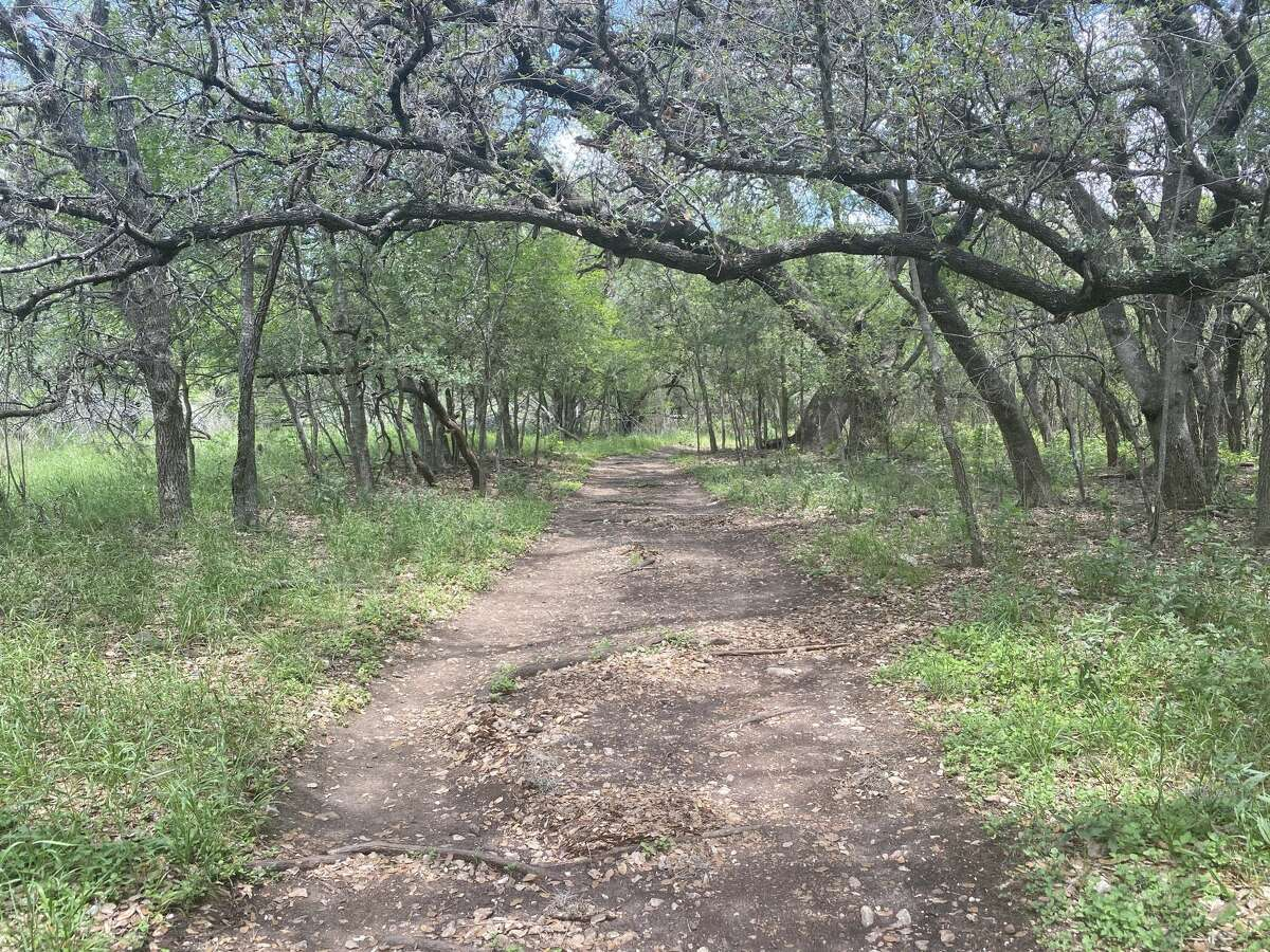 Local Marjesca Zoellner created a petition on change.org a few weeks ago to help raise awareness of the city's parks and recreation department's proposed plan to slab concrete on the nature trail, Mud Creek's Loop, at McAllister Park. The project is slated to be an extension of San Antonio's Howard W. Peak Greenway trail system.