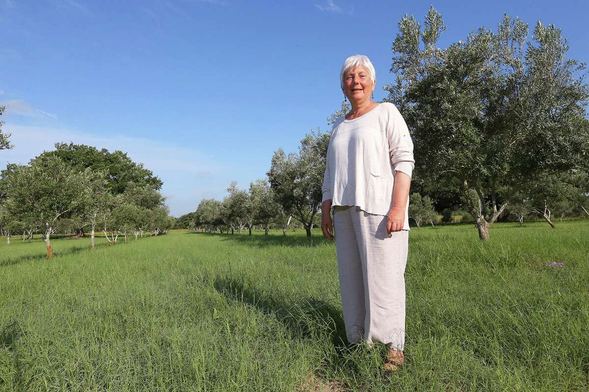 Sandy Oaks Olive Orchard owner Saundra Winokur at her Elmendorf farm in 2013. Winokur planted her first olive tree in 1998 and has since grown the farm to include an 11,000-tree orchard, gift shop and restaurant. The orchard has closed following Winokur's passing earlier this year.