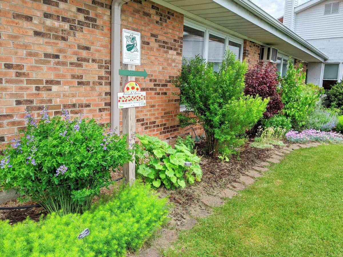 Monarch waystations, such as this one created and maintained by the Portage Lake Garden Club, give monarch butterflies a place to eat, rest and reproduce. (Courtesy photo/Mary Jo McElroy)