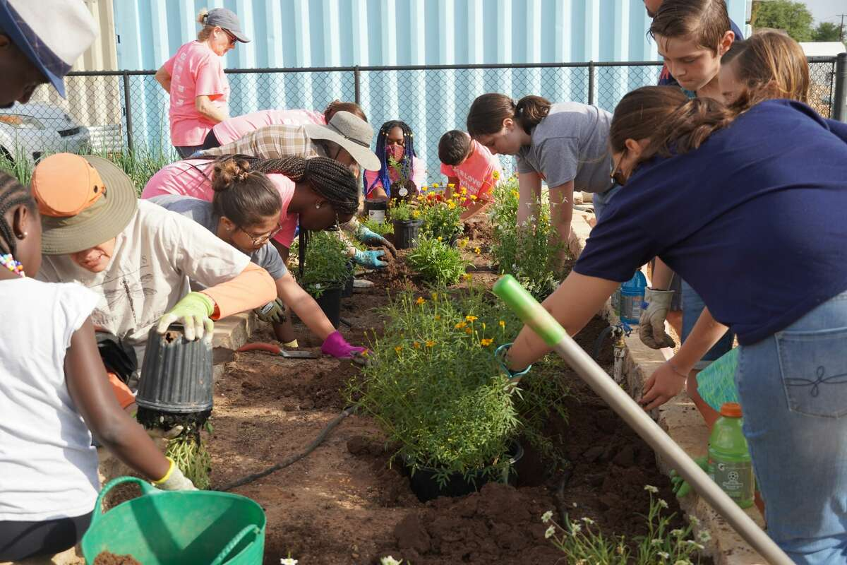 Midland Health and Keep Midland Beautiful had an event this past weekend that allowed members of the community to help with the installation of a monarch and pollinator garden.