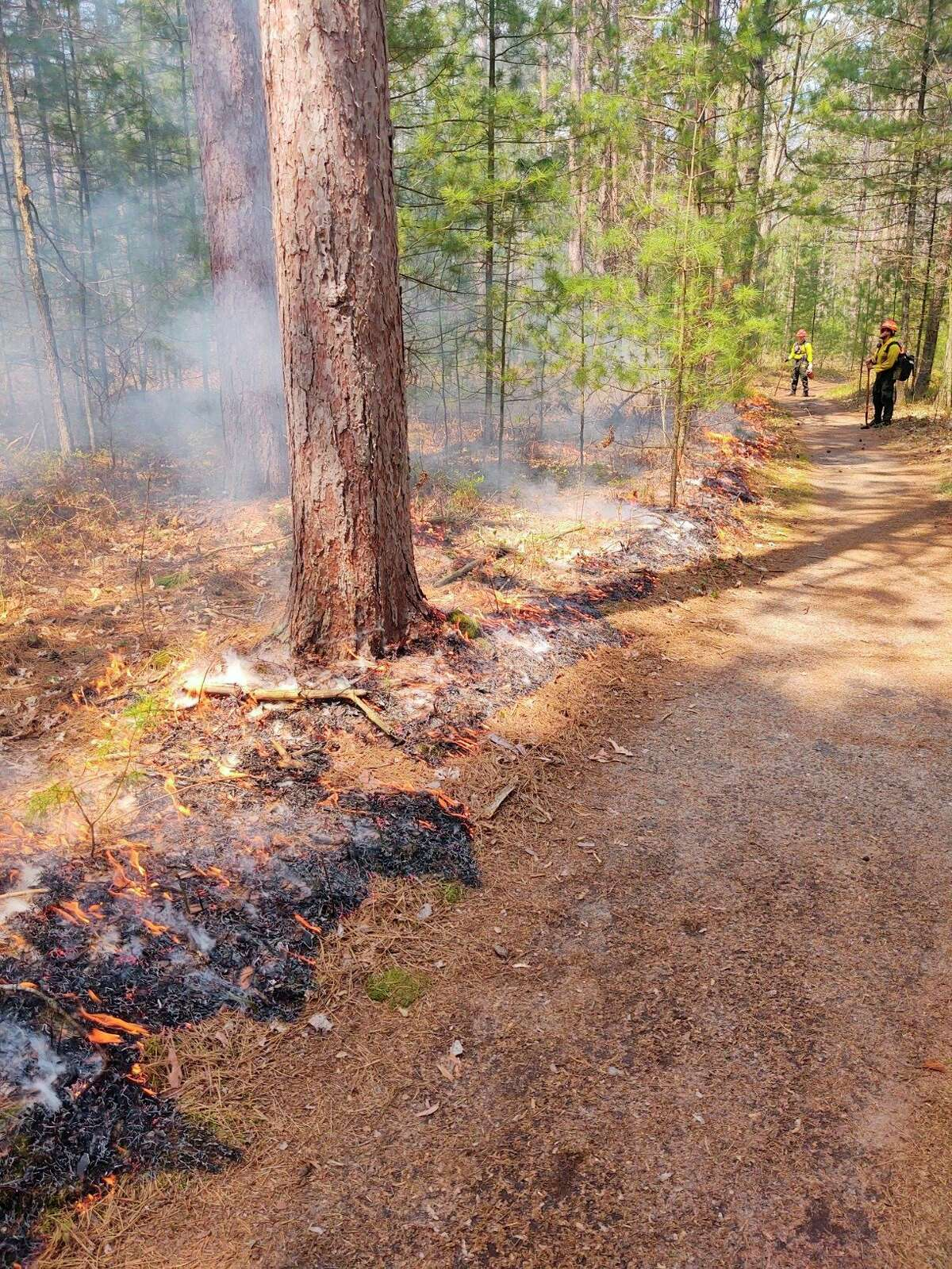 A prescribed burn at four areas of the Sleeping Bear Dunes National Lakeshore has been completed, helping protect against the threat of wildfire and rejuvenating the land. (Courtesy Photo/NPS)