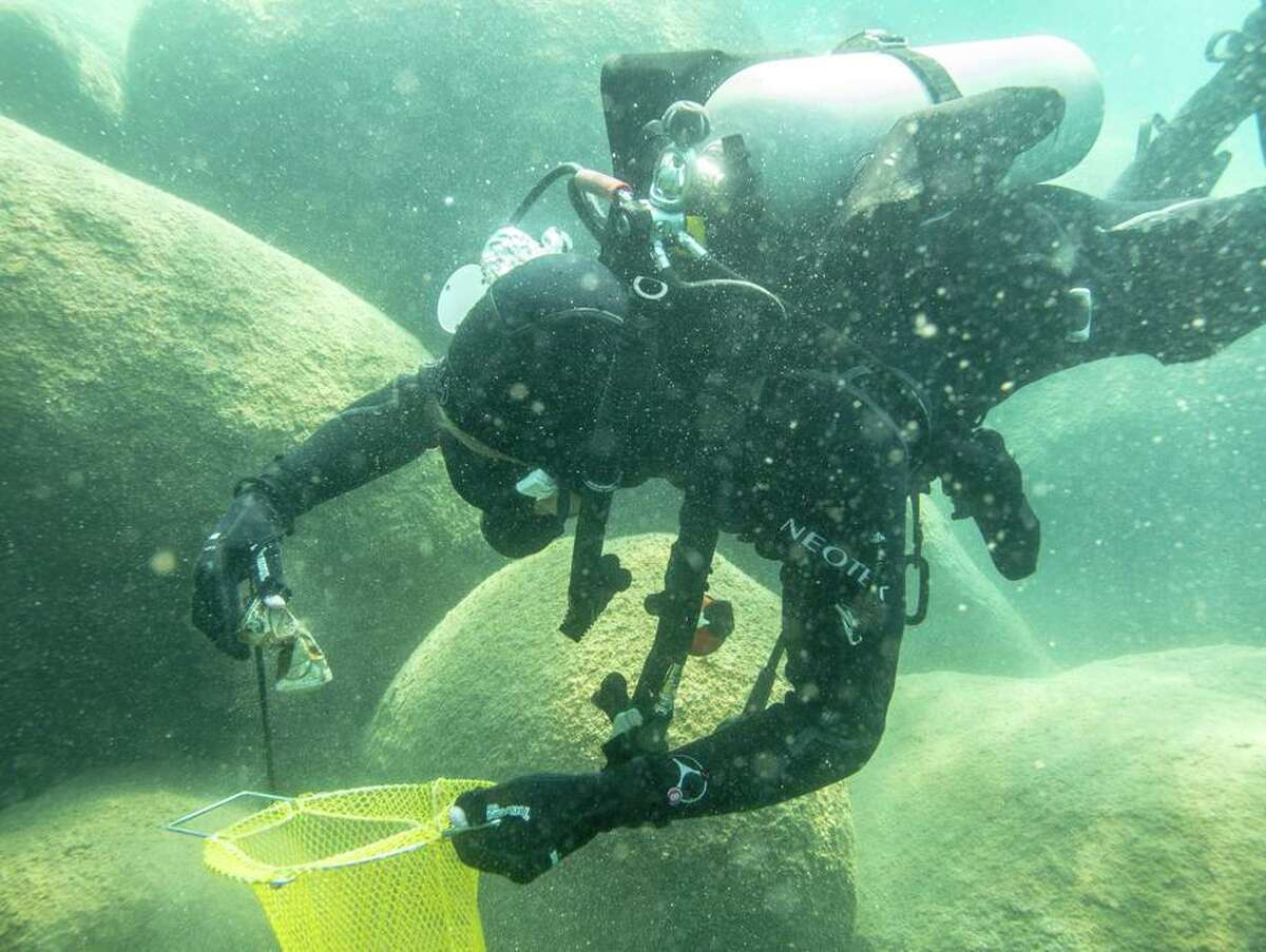 A scuba diver hunts for trash in Lake Tahoe.
