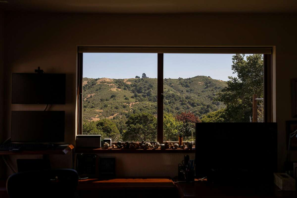 Wildcat Canyon is seen through a window in the home of Cortis Cooper, a Kensington resident who helped start Wildcat Watch.