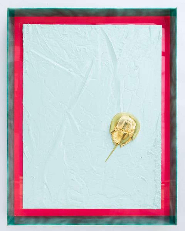John Knuth, (b. 1978,) Golden Horseshoe Crab 2, 2021. Acrylic on canvas, gold foiled horseshoe crab shell in acrylic frame. 24 x 18 inches (61 x 45.7 cm,) 27 1/2 x 21 1/2 inches (69.8 x 54.6 cm,) (framed,)