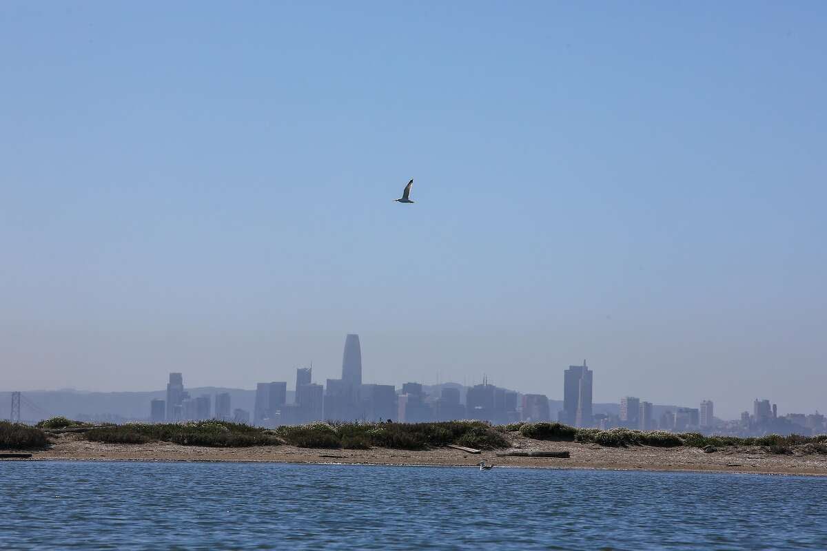 A scenic view of the San Francisco skyline from the Richmond Inner Harbor on Saturday, March 27, 2021.