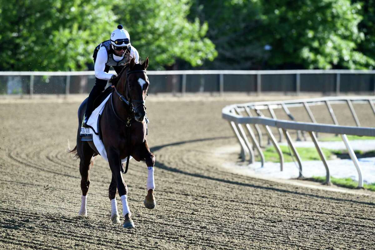 Preakness entrant Crowded Trade, trained by Mechanicville native Chad Brown, was on track for morning exercise at Pimlico Race Track on Thursday, May 13, 2021, in Baltimore. (Skip Dickstein / Special to the Times Union)