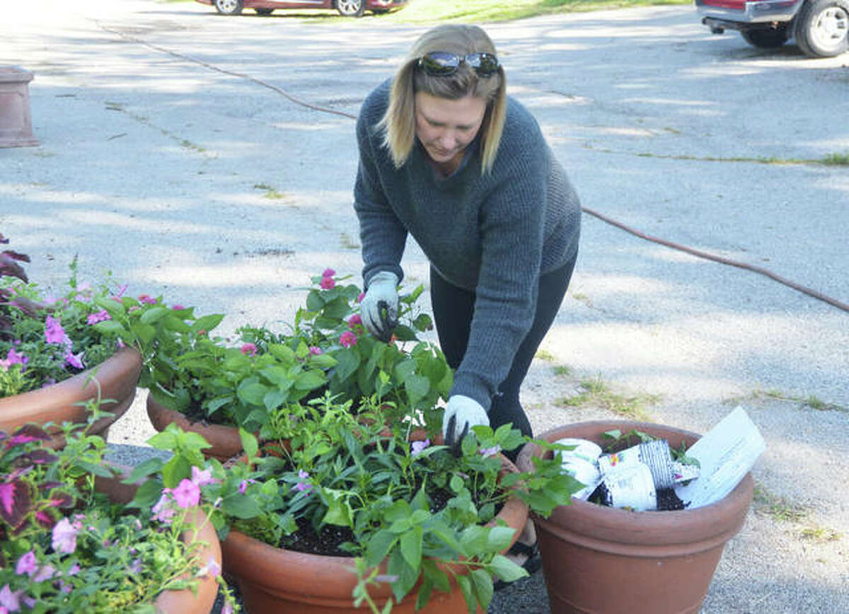Sarah Cundiff, the new chairperson of the Edwardsville Beautification and Tree Commission, plants flowers in pots that will be placed along Main Street in downtown Edwardsville.