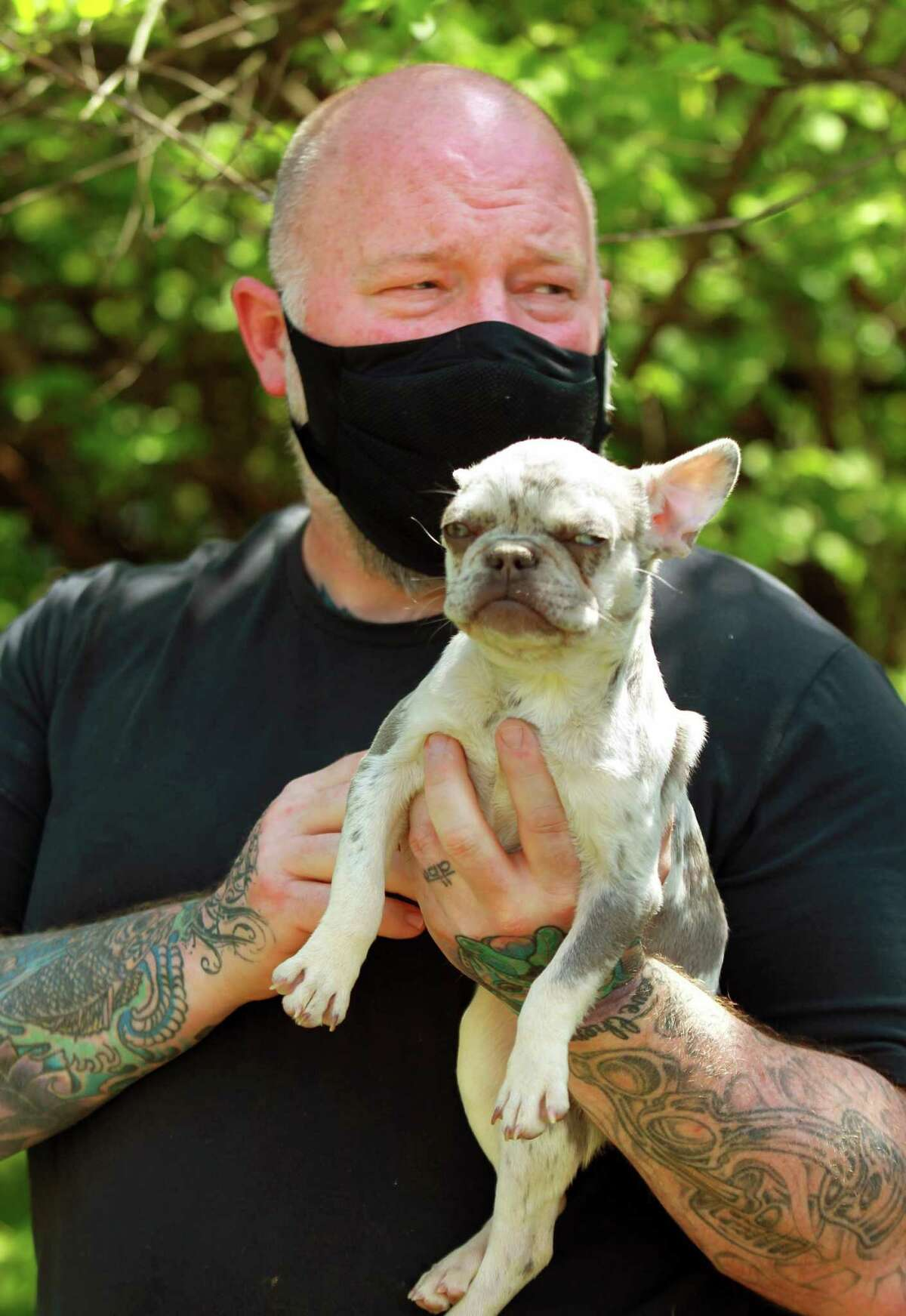 Volunteer Andy Holcombe holds one of 22 dogs recently rescued at the Stamford Animal Shelter in Stamford, Conn., on Wednesday April 28, 2021.