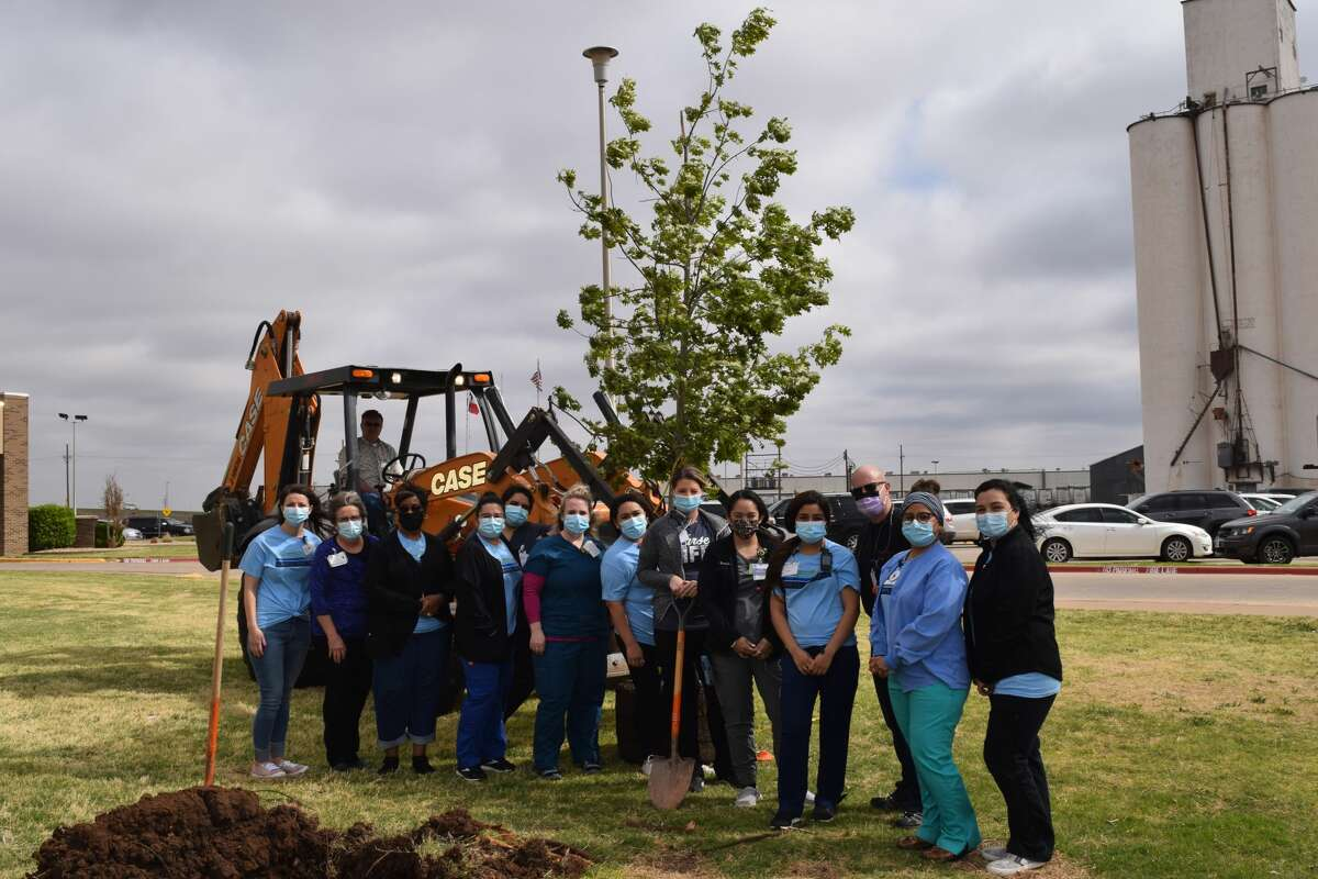 Covenant Health Plainview will be hosting a Celebration of Life on Thursday. A dedication will be held for the Spirit of Life tree, which was recently planted.