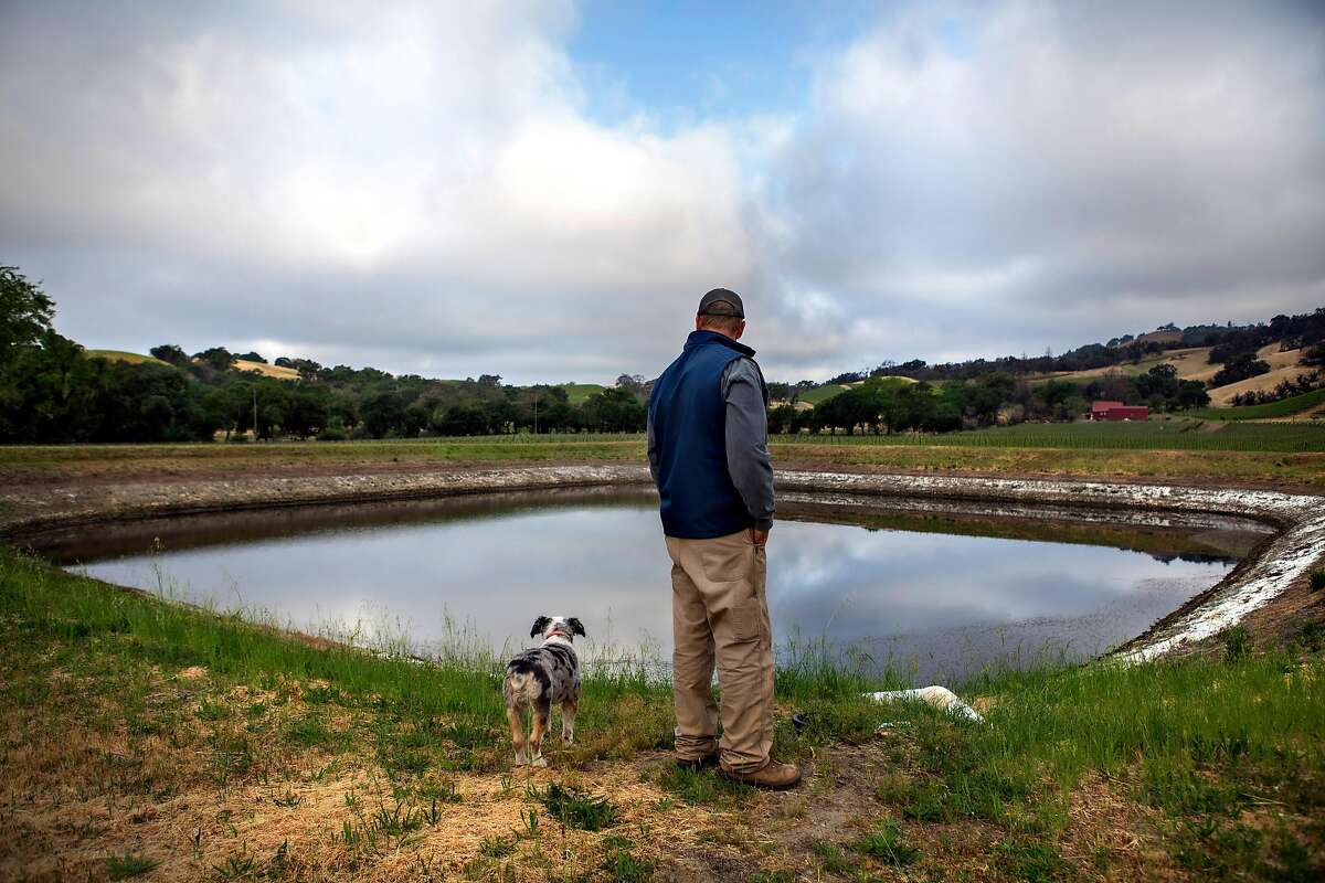 Bret Munselle, vineyard owner and manager of the Munselle Vineyards, with his dog, Truckee, next to one of his reservoirs that's drying up in Geyserville, California May 6, 2021.