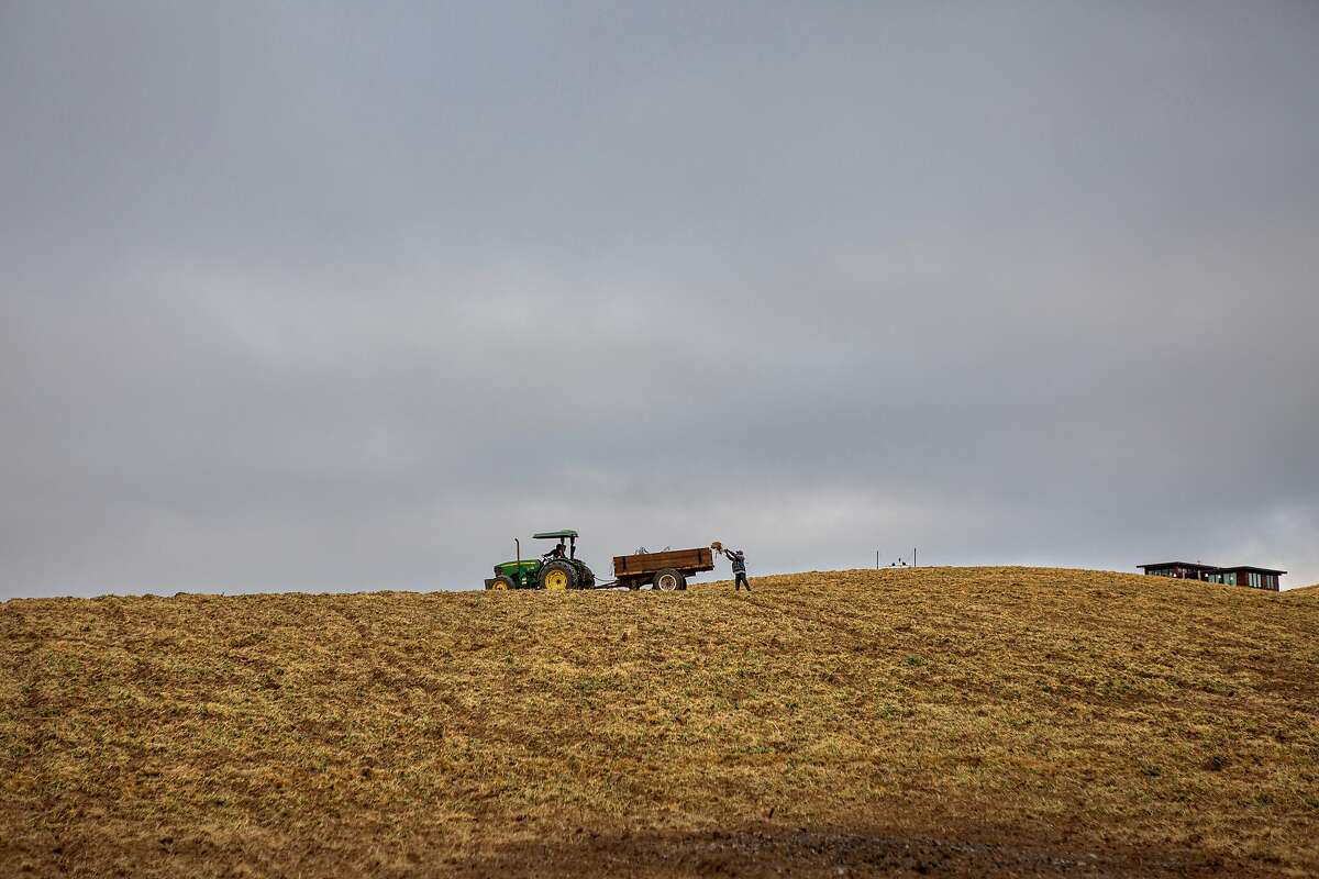 Bret Munselle's employees working on the Wasson Ranch in Geyserville, California May 6, 2021.