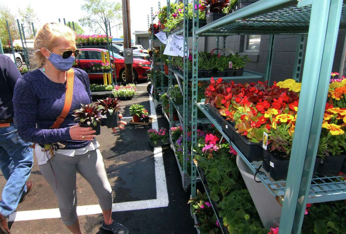 Sally Head browses a selection of annuals for sale during Shannon Landscape and Garden Center's grand opening at its new location along Honeyspot Road in Stratford, Conn., on Friday May 7, 2021.