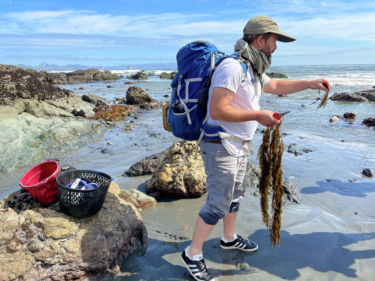That backpack is stocked with everything Spencer Marley needs to make a post-seaweed foraging