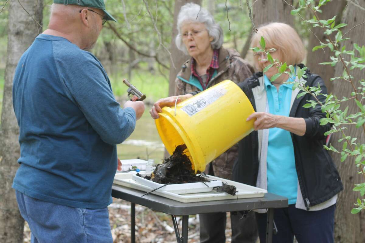 Volunteers donned waders and sifted through muck Saturday to collect macroinvertebrates at various sites in the Lower Manistee River Watershed as part of the Manistee Conservation District's stream monitoring program.