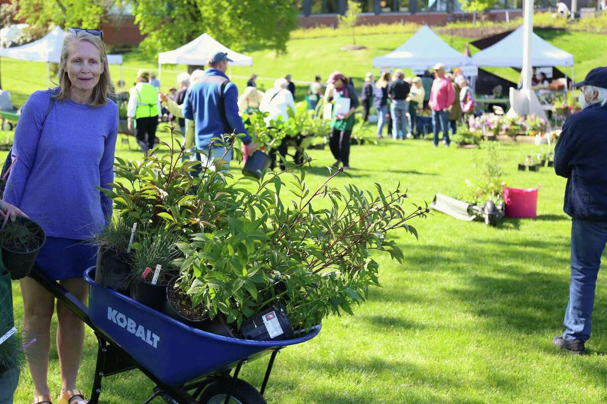Anne Palmer, of Westport, at the annual Westport Garden Club plant sale on Friday, May 14, 2021, on Jesup Green.
