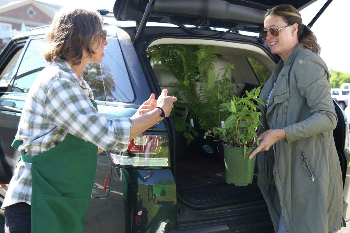 Bev Stanley, left, helps customer Judy Jahnel, of Westport, with her purchase at the annual Westport Garden Club plant sale on Friday, May 14, 2021, on Jesup Green.