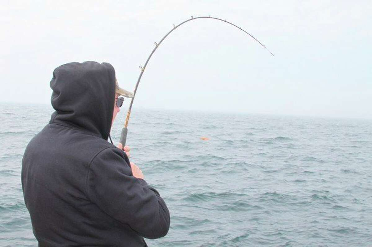 Anglers who turn in a trout or salmon caught with a tagged adipose fin are entered into a drawing to win $100. (File photo)