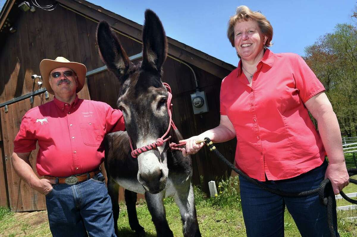 Michael Cappelli (left) and his wife, Kimberly Brockett of Tripledale Farm in Guilford are photographed with their American Mammoth Jackstock donkey, Sharpy, on May 6, 2021. Sharpy is the model for a United States Postal Service stamp to be released soon.