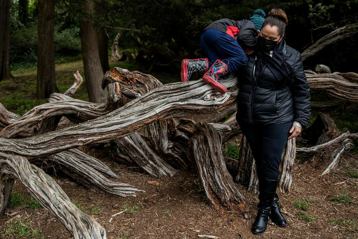 Lily Marquez helps son Jeremiah, 5, dismount from a tree in Golden Gate Park.