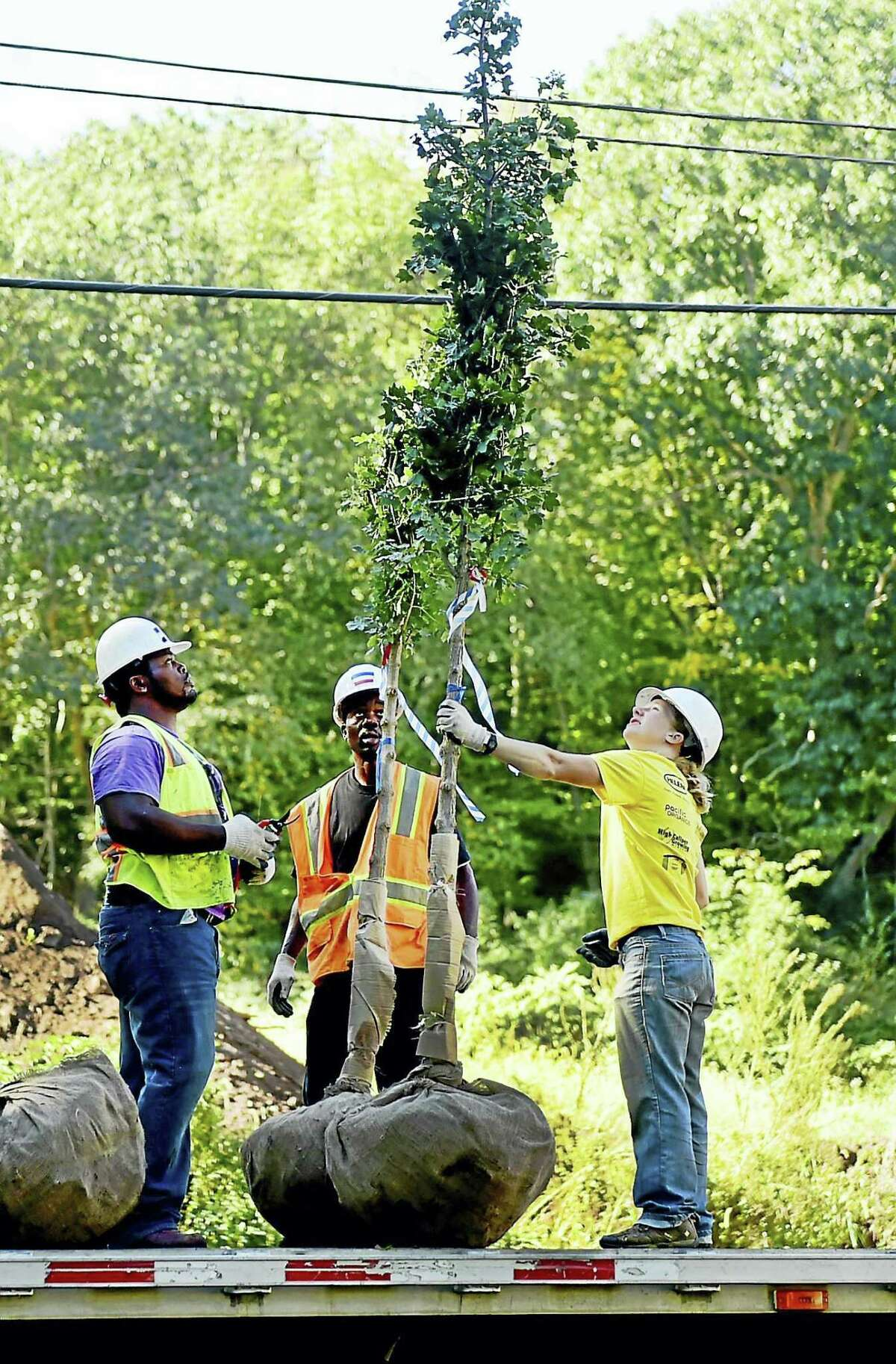 A $10,000 award to New Haven Urban Resources Initiative will help support its GreenSkills Tree Planting and Outreach program, through which city residents can request that a tree be planted, for free, on their property.