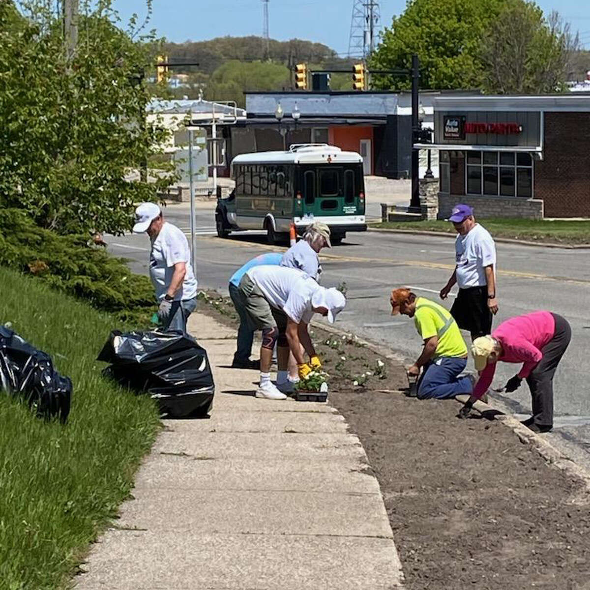 A group of volunteers from the Manistee Senior Softball League and Spicer Group could be seen near Cypress Street and River Street on Tuesday for the Blossom Boulevard Manistee planting efforts.