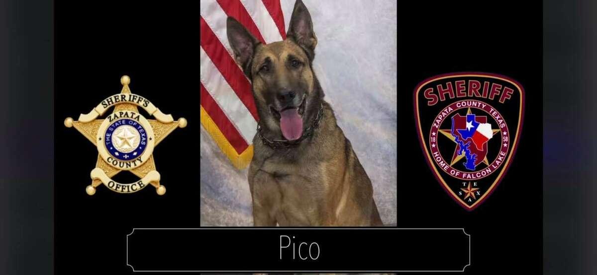 Officer Pico