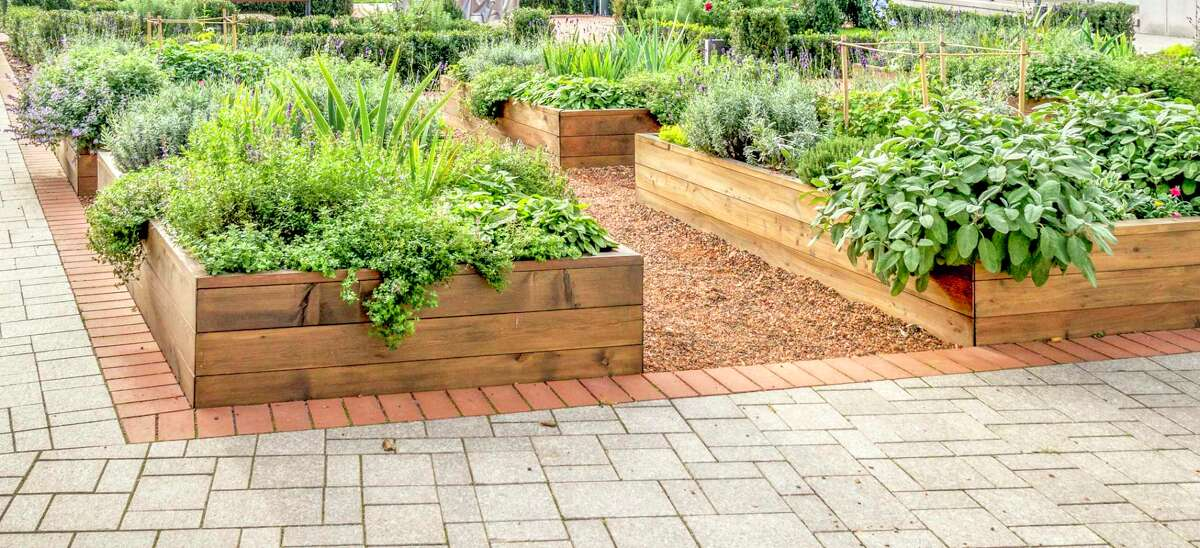 An example of raised garden beds.