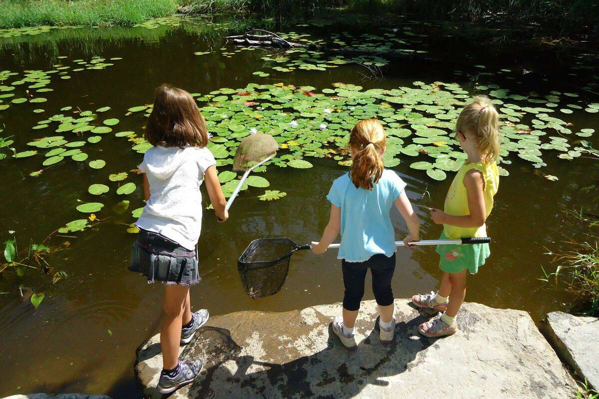 Flanders Nature Center & Land Trust welcomes the public to its second Flanders Festival - A Celebration of Art, Farming and Nature from 11 a.m. to 4 p.m. May 22, rain date May 23.