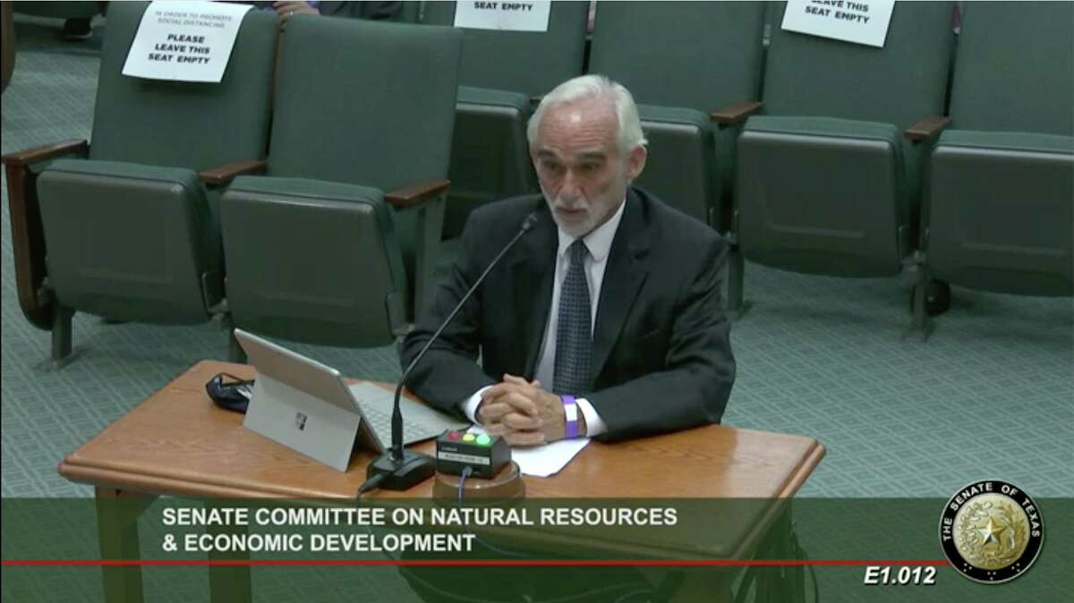 Dick Lavine, a senior fiscal analyst for the group Every Texan, criticized the state's Chapter 313 tax incentive program during a hearing at the Senate Committee on Natural Resources and Economic Development on May 18, 2021.