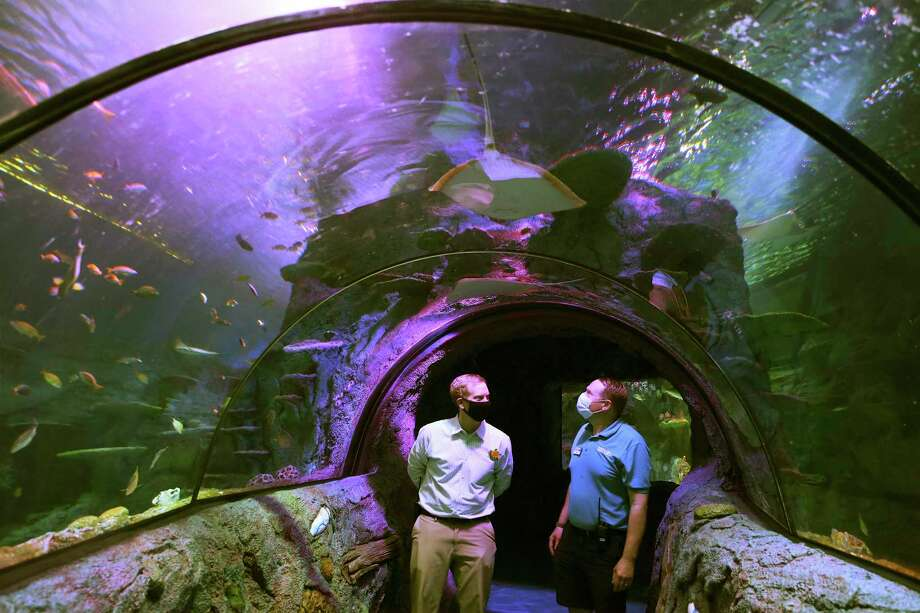 Sea Life San Antonio marketing manager Chase Hathaway, left, and aquarium curator Nick Ireland check out the Ocean Tunnel. The multistory aquarium opens Tuesday at the Shops at Rivercenter. Photo: Kin Man Hui /Staff Photographer / **MANDATORY CREDIT FOR PHOTOGRAPHER AND SAN ANTONIO EXPRESS-NEWS/NO SALES/MAGS OUT/ TV OUT