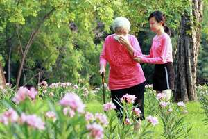 Asian senior grandmother sneezes in handkerchief due to pollen allergies,woman allergy to blooming flowers runny nose on tissue paper,elderly people have allergic to pollen blowing nose in the garden