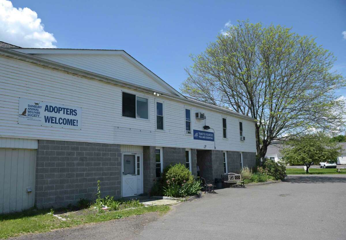 The Danbury Animal Welfare Society at 147 Grassy Plain St. in Bethel, Conn., is looking to renovate its facility.