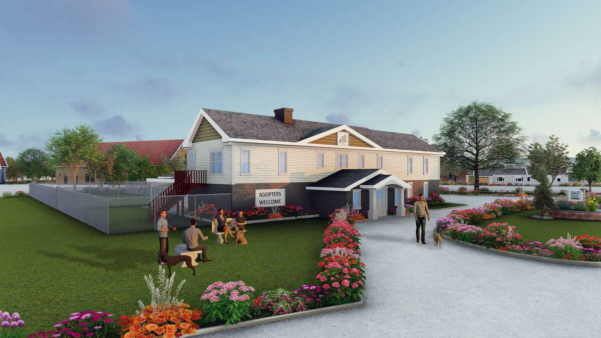 Conceptual rendering for the renovation at the Danbury Animal Welfare Society, Grassy Plain St. in Bethel, Conn. Updated renderings and information can be found at renovation.daws.org.