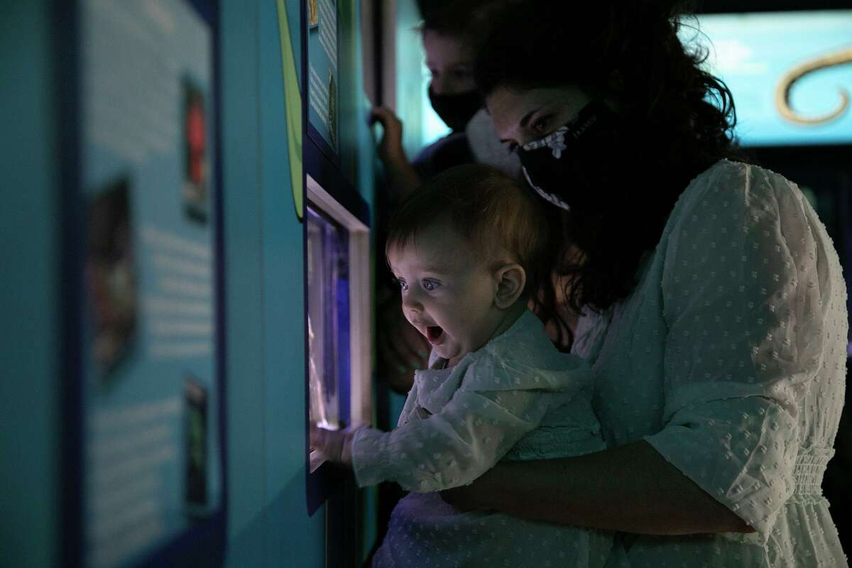 Jessica Azzopardi and daughter Lucia, 8 months, check out fish in the zoo aquarium, one of four aquatic exhibits in San Antonio.