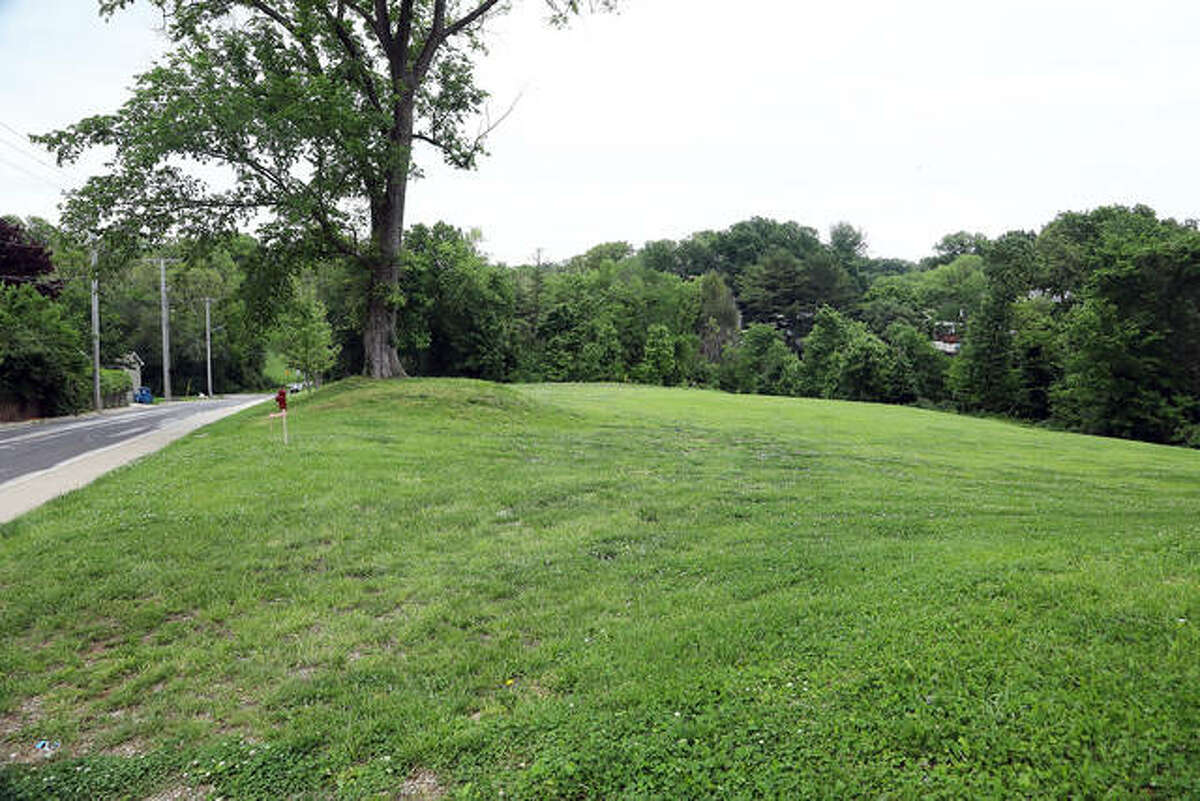 If approved by city council, this vacant land on East Union Street could become The Pfarm, a pocket neighborhood development with 14 detached villas.