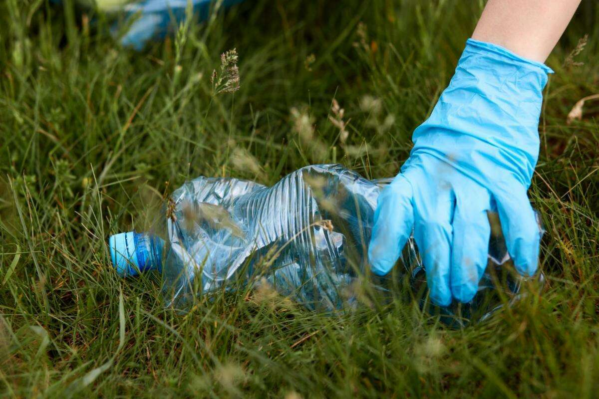 Wilton is having a town-wide cleanup on Saturday, May 29, 2021, from 9 a.m. to noon, according to information from the non-profit organization Wilton Go Green.
