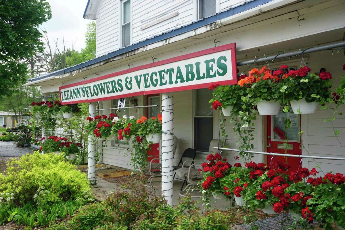 LeeAnn's Flowers and Vegetables has been a go-to spot for flower lovers from Big Rapids and the surrounding areas for nearly a decade. (Pioneer photo/Joe Judd)