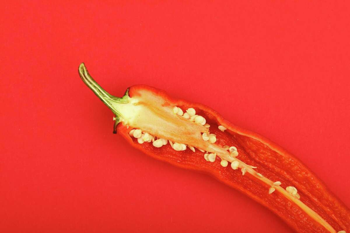 The pithy white membranes inside a chile contain up to 90 percent of the pepper's capsaicin.