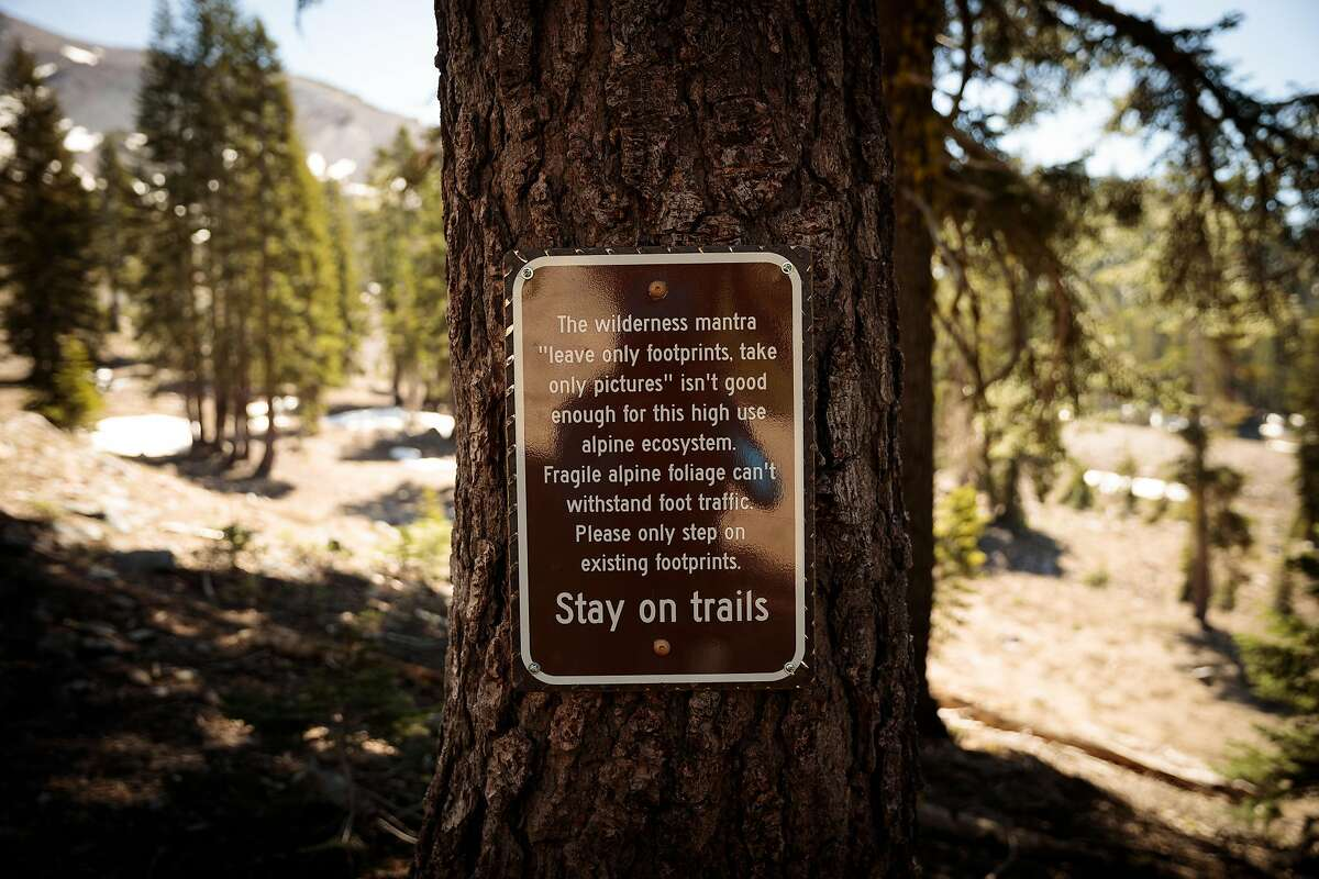 A sign reminds visitors to stay on trails as they enter the Mount Shasta Wilderness. The demand for guided treks surged during the coronavirus pandemic last year.