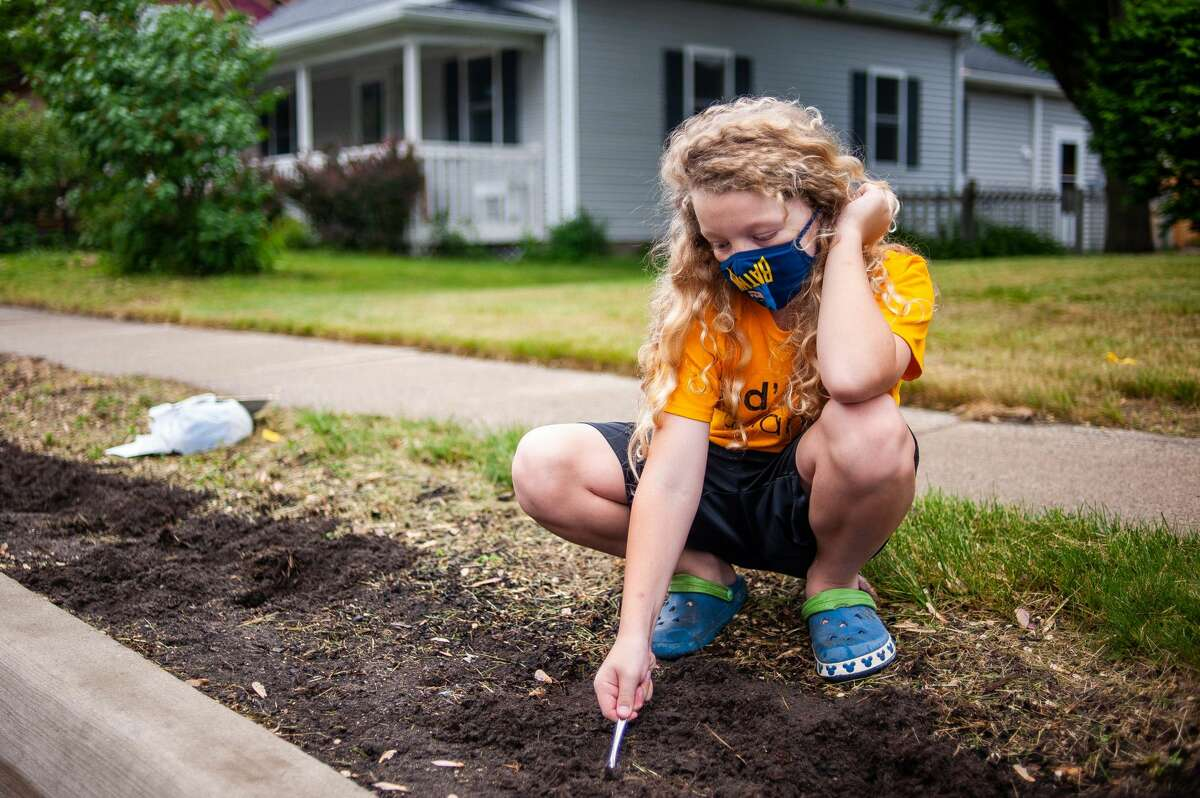 Issac Shealy, 9, with Trinity Lutheran Church digs a hole in soil with a spoon during the Midland Blo0ms event on Saturday, May 22, 2021 along Eastman Avenue (Andrew Mullin/AMullin@hearstnp.com).