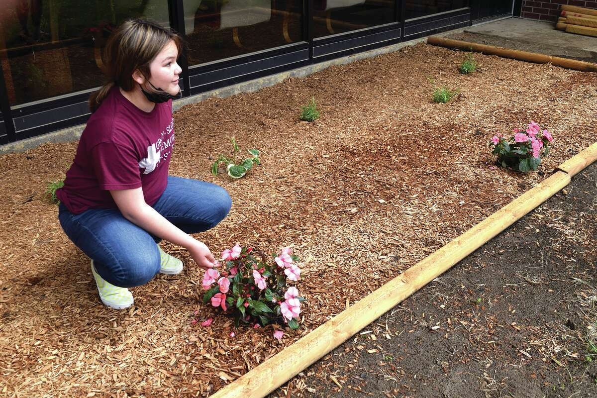 Sixth-grader Reese Lierhr checks the plants in front of Perry Middle School to see if they need water.