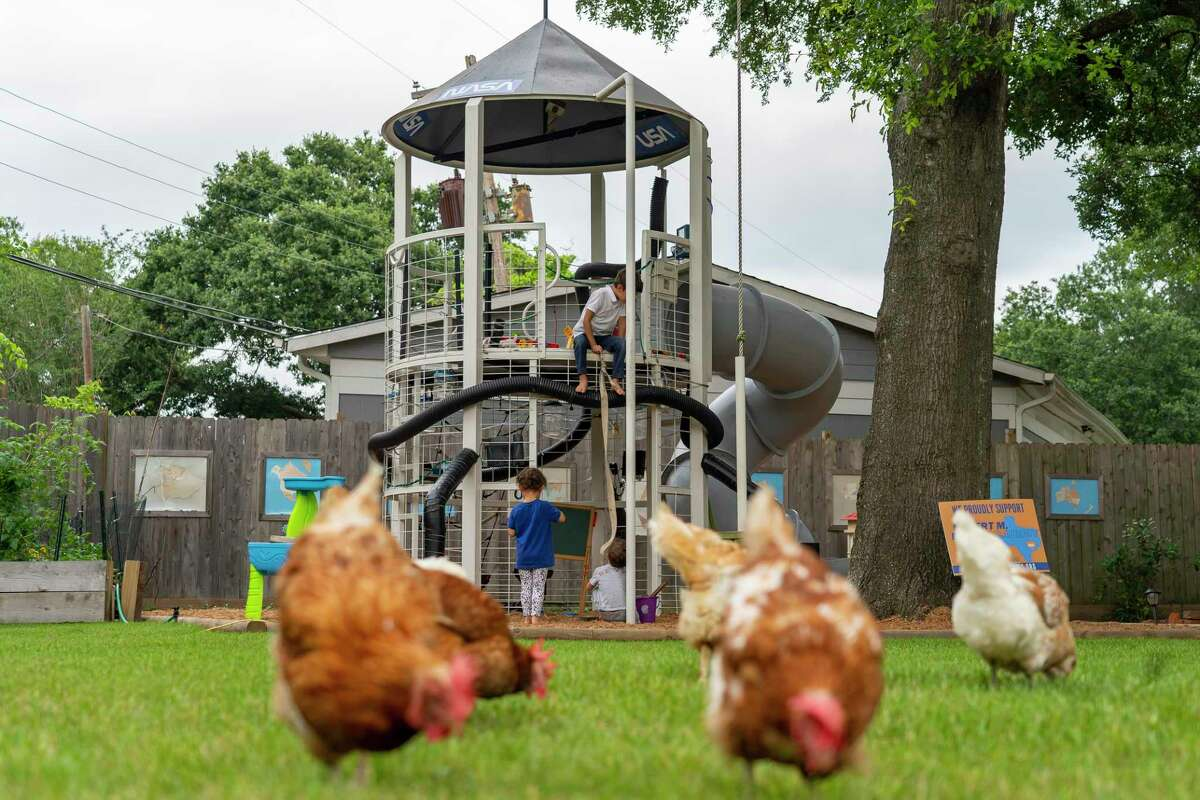 Chickens wander in the Goldbergs' backyard in front of playground equipment made to mimic a space ship.
