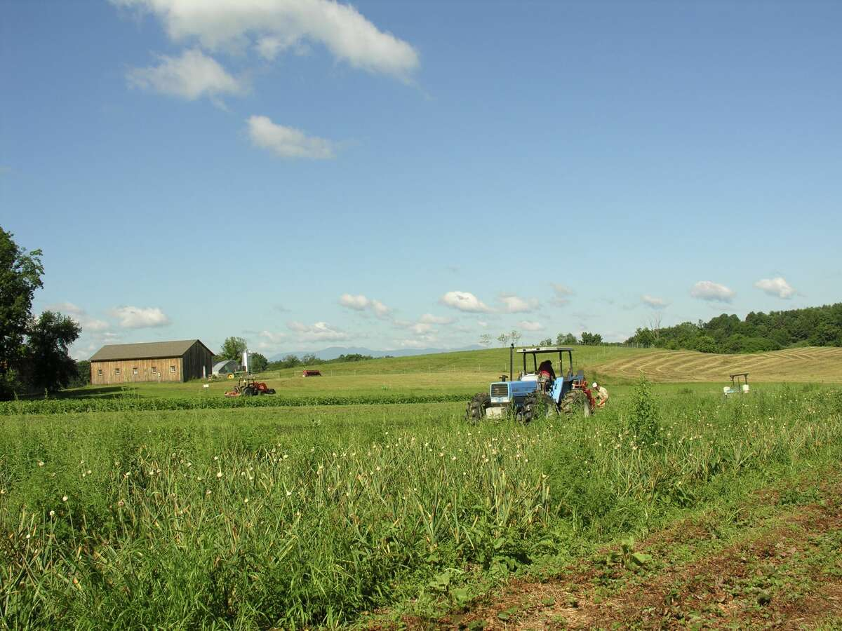 Conservation easements are increasingly being used by farmers to reduce their financial burden, allow for more investment in farm infrastructure and ensure their ability to grow food while protecting their land's agricultural use for the future.