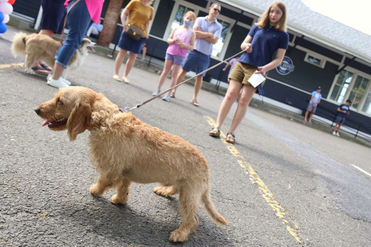 Amelia Bowman, 12, and Copper at The Darien Depot's Dog Show.