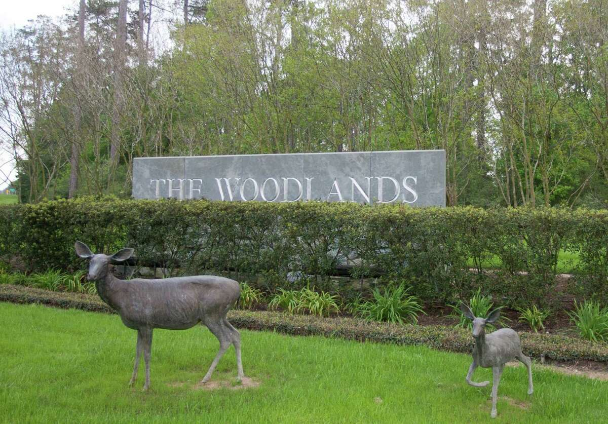 Bronze deer statues decorate the entrance to The Woodlands at the intersection of Texas 242 and FM 1488.