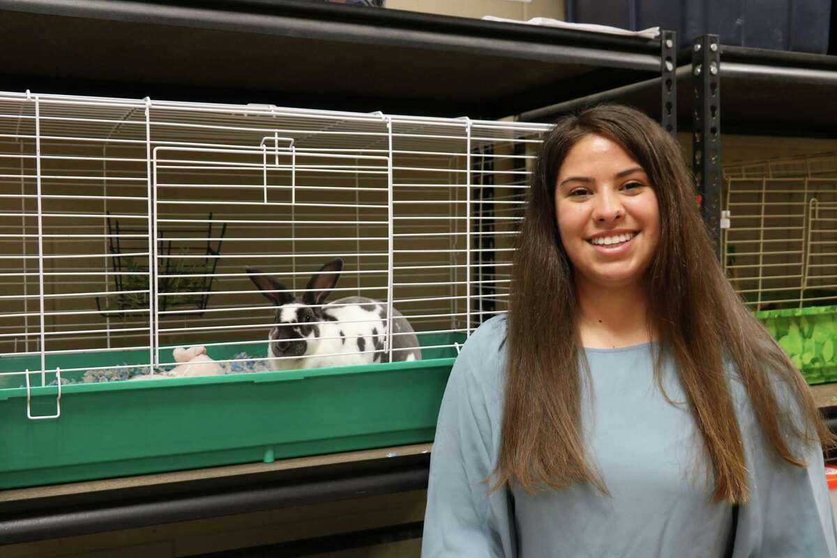 Mara Currier, a graduating Clear Springs High School senior, wants to channel a lifelong love of animals into studies eventually leading her to a career as a wildlife veterinarian. She plans to attend Texas A&M at Galveston to major in marine biology.