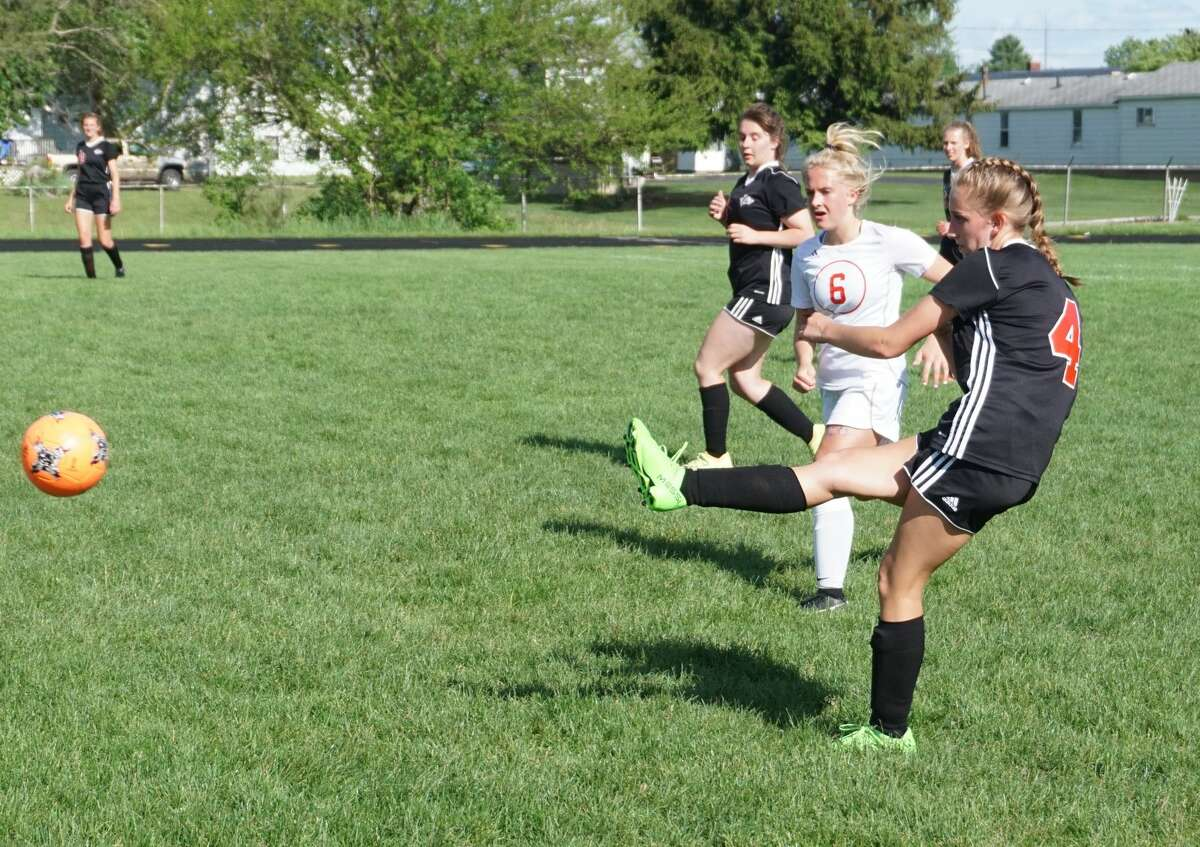 Reed City's girls soccer team was defeated 6-0 by Whitehall in Wednesday's District 46 Tournament match.