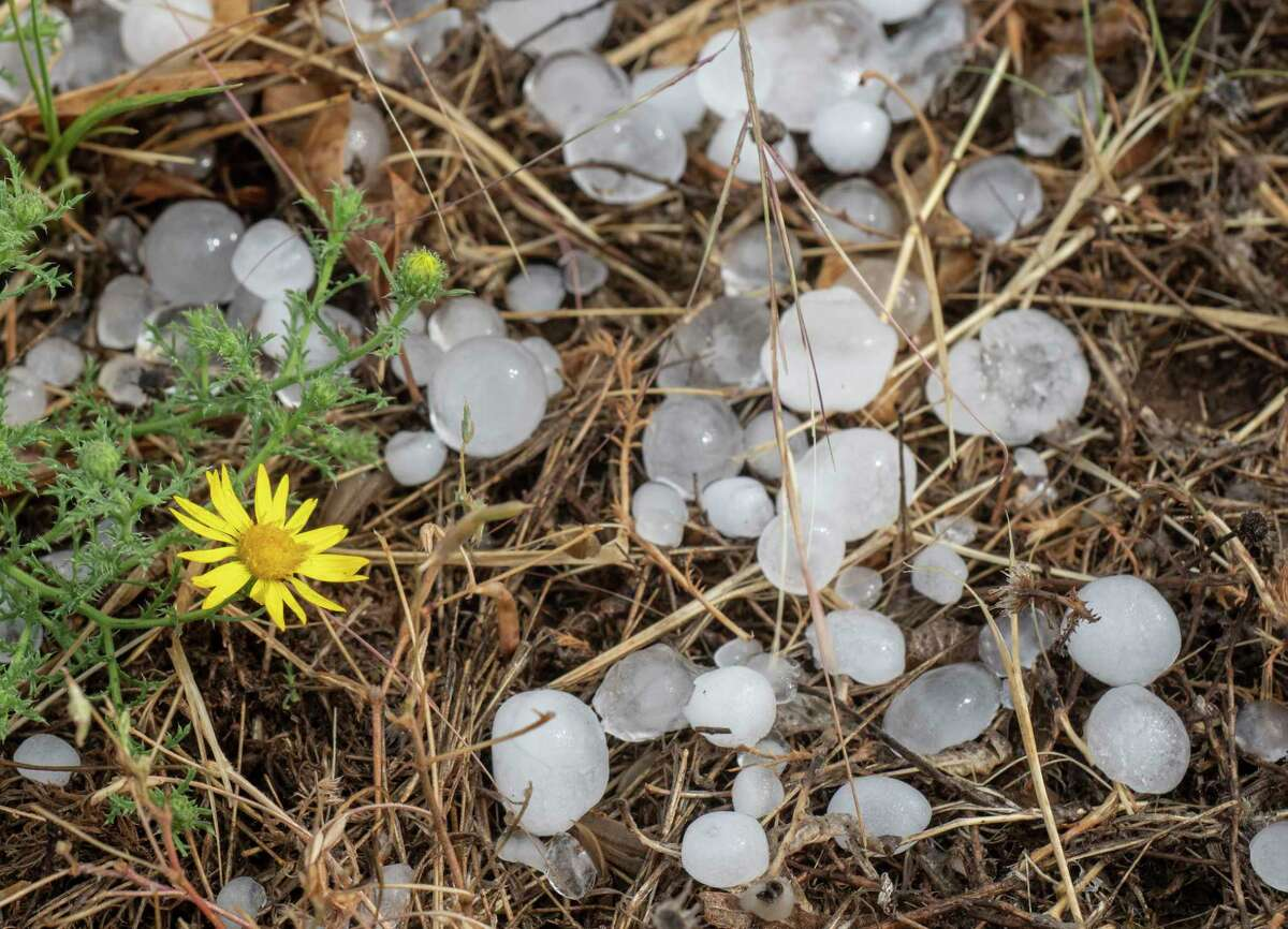 Heavy rain and hail pelted parts of Midland 5/27/2021 evening with hail the size of peas up to an inch in diameter. Tim Fischer/Reporter-Telegram