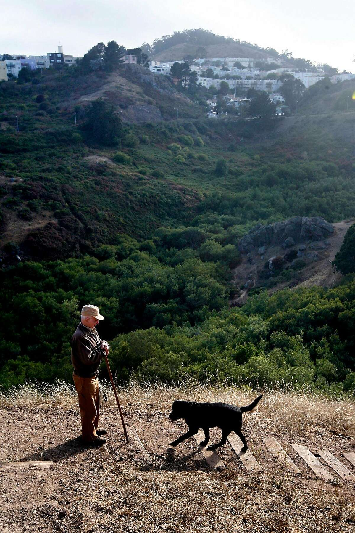 Leo Hainzl, who took daily 6-mile walks with his dogs in Glen Canyon Park, visits the park with his dog Fritz in 2008. Last year, he was slain while walking in the park with his dog Rip.